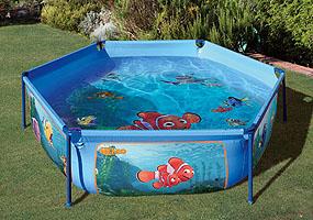 Piscina cuidados plantas y geranios for Limpiafondos piscina leroy merlin